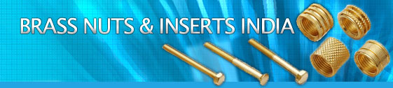 Brass Rubber Moulding inserts Brass moulding inserts india Hex Nuts DIN 934 Brass Bolts Nuts Brass fasteners Brass Panel nuts Brass Lock Nuts india Jamnagar Manufacturers Brass inserts Brass plastic moulding inserts Brass PPR inserts Brass fittings PPR fittings Brass CPVC inserts some nuts square nuts cap nuts Brass panel nuts lock nuts jamn nuts Brass manufacturers india Jamnagar Brass components turned parts fasteners